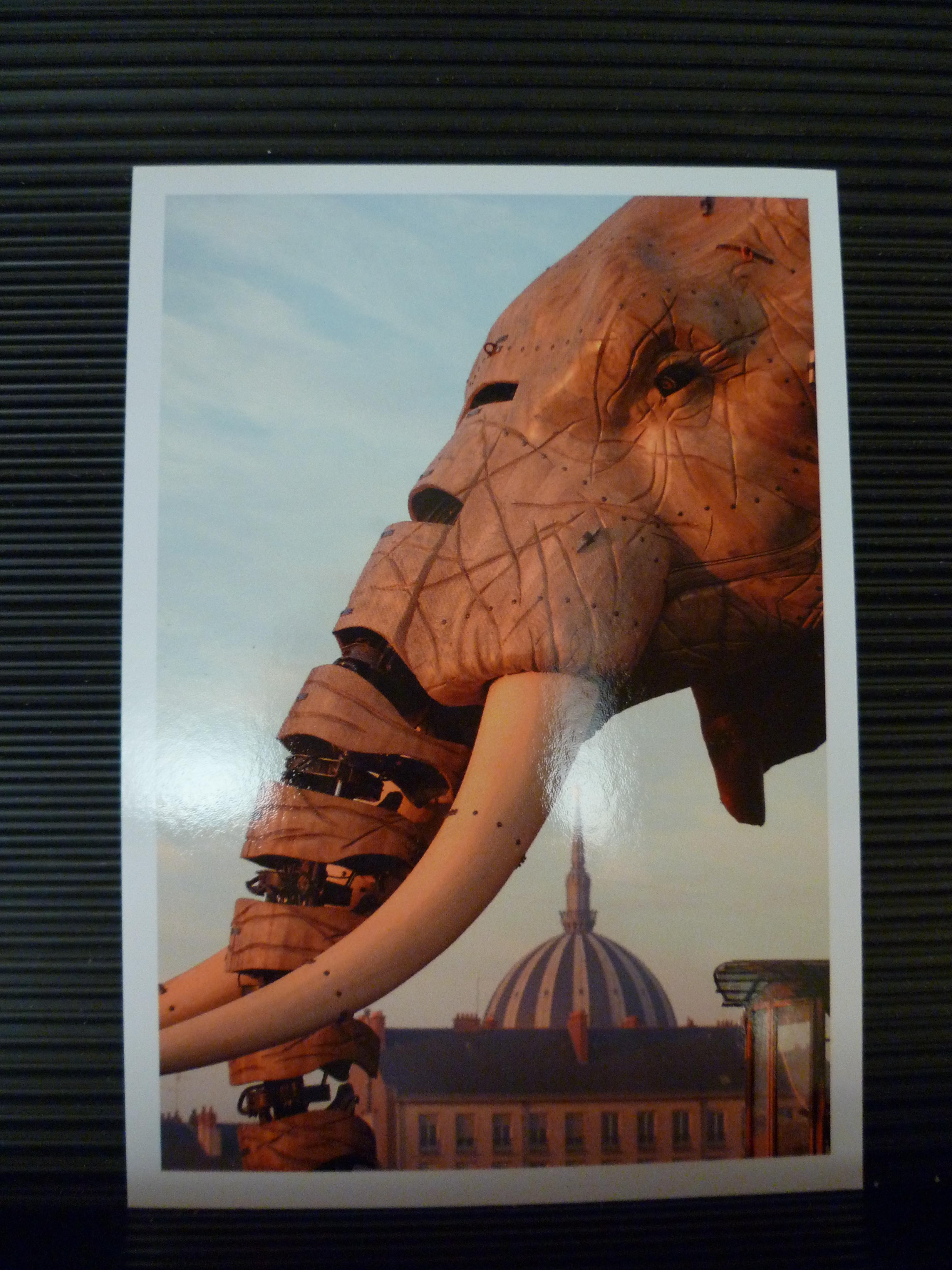 Elephant et tour LU